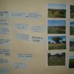 set09_1º Encontro regional MEDISS, Moura (5)